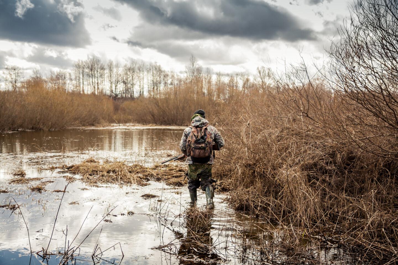 hunter man creeping in swamp during hunting period