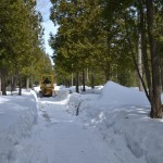 DeerSave-trail breaking