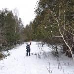 DeerSave-cutting down cedar browse