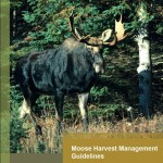 Moose Harvest Management