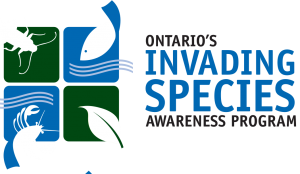 invading_species_logo#8032E4