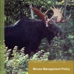 Moose Management Policy