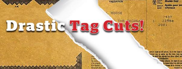 tagcuts